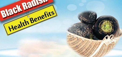 Health Benefits of Black Radish – Health Benefits 2016