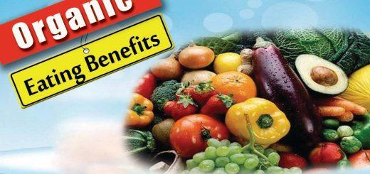 Health Benefits of Eating Organic   4 Benefits of Eating Organic Food- Health Benefits 2016