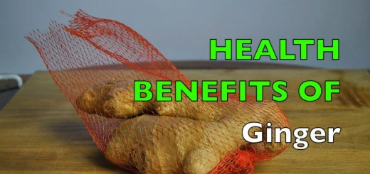 Health Benefits of Ginger Plant / Fresh Root to Tea & Juice Drinks w/ Nutrition Facts & Recipes